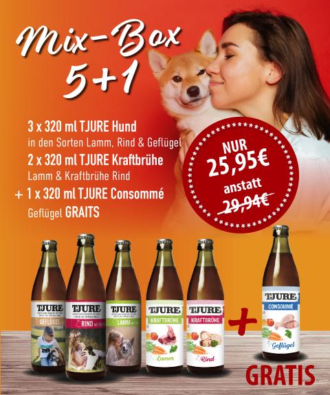 Mix-Box Hund 5 + 1
