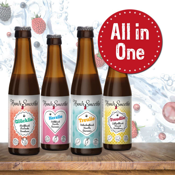 All in One - HundeSmoothie 4 x 220 ml